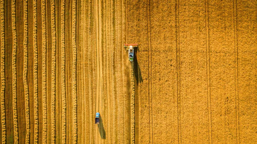Management software for animal feed and grain storage industries.